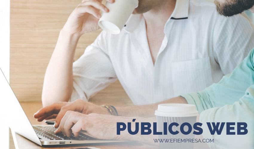 Públicos Web Personalizado, Estrategia para Emprendedores