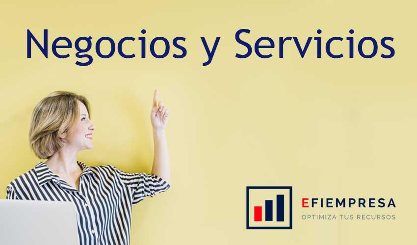 Negocios y Servicios, Clasificación y Oportunidades efiempresa