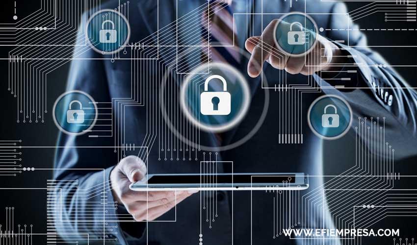 Políticas de Privacidad y la Seguridad del Usuario. Efiempresa